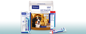Photo showing group of Clean Every Tooth dental care products for dogs